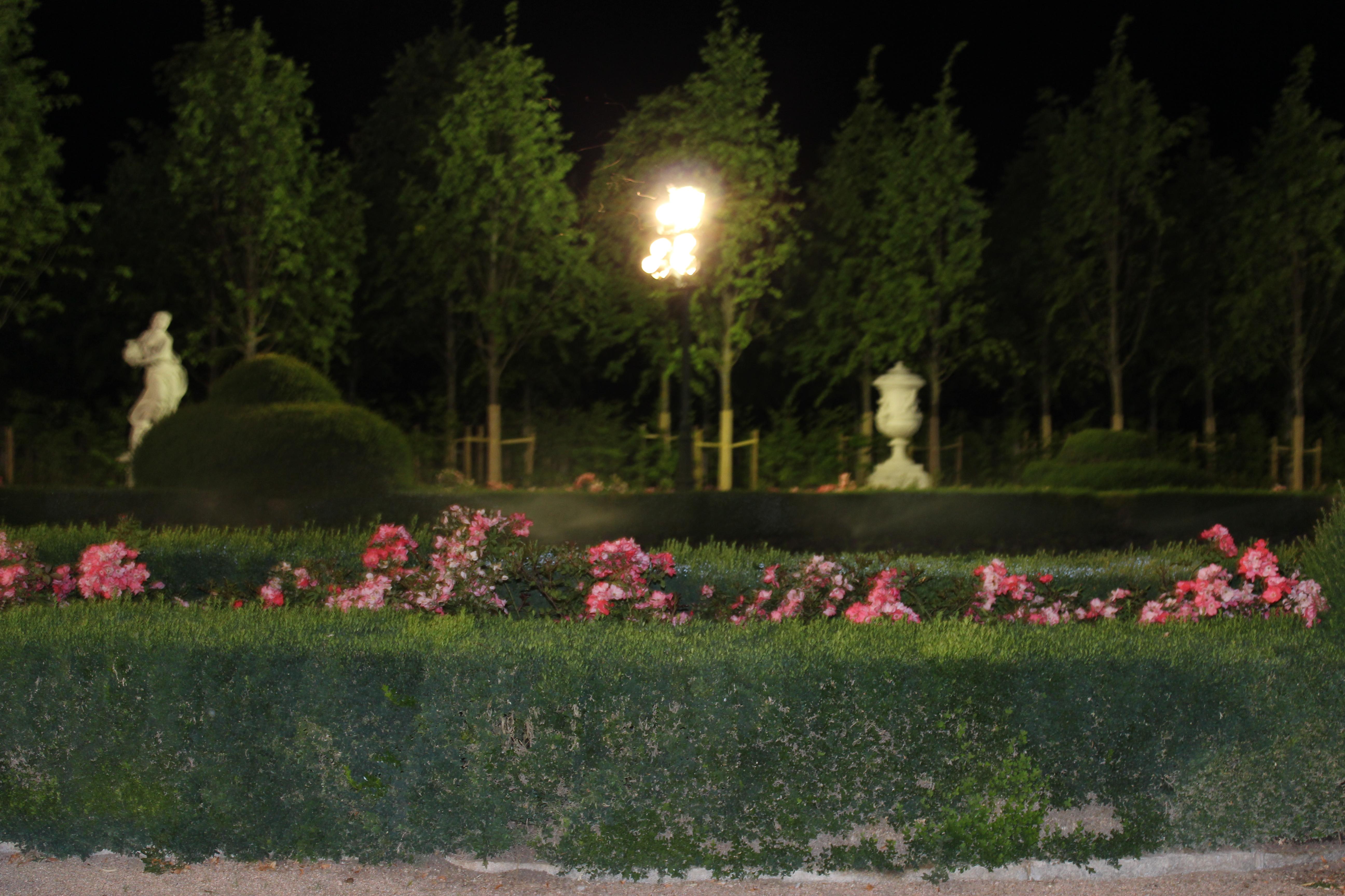 En El Jardin De La Noche Meilleures Idées Créatives Pour la Conception de la Maison